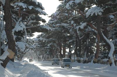 雪の赤松街道(1)