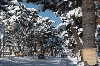 雪の赤松街道(2)